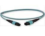 Custom MTP/MPO OM3 10-Gig 12 Fiber Cable - Plenum Rated - made in USA by QuickTreX