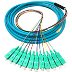 3 meter SC 12 Fiber Jacketed PVC 50/125 OM3, 10 GIG Multimode Fiber Optic Pigtail Kit Assembly