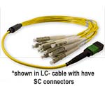 Custom MTP/MPO to SC Singlemode 12 Fiber Fanout Cable - Plenum Rated - made in USA by QuickTreX