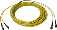 Custom MTP/MPO Singlemode 24 Fiber Trunk Cable - Plenum Rated - made in USA by QuickTreX
