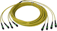 Custom MTP/MPO Singlemode 48 Fiber Trunk Cable - Plenum Rated - made in USA by QuickTreX