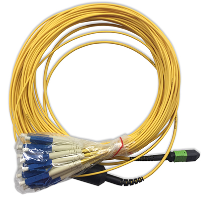 Stock 2 Meter Male MTP/MPO to 24LC Singlemode 24 Fiber Fanout Cable