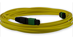 Stock MTP Singlemode 12 Fiber Cable (5 meter) - Female/Female, Method A - Straight Through