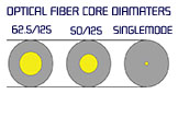 Fiber Type vs. Speed and Distance